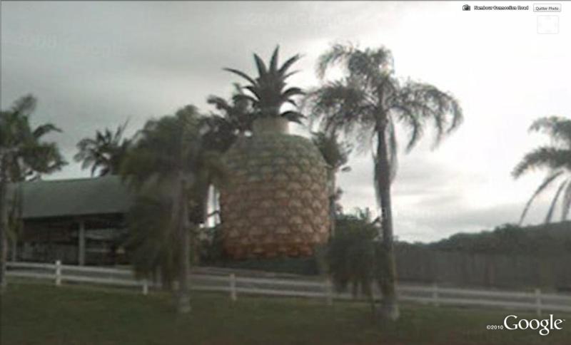 Les fruits géants Ananas10