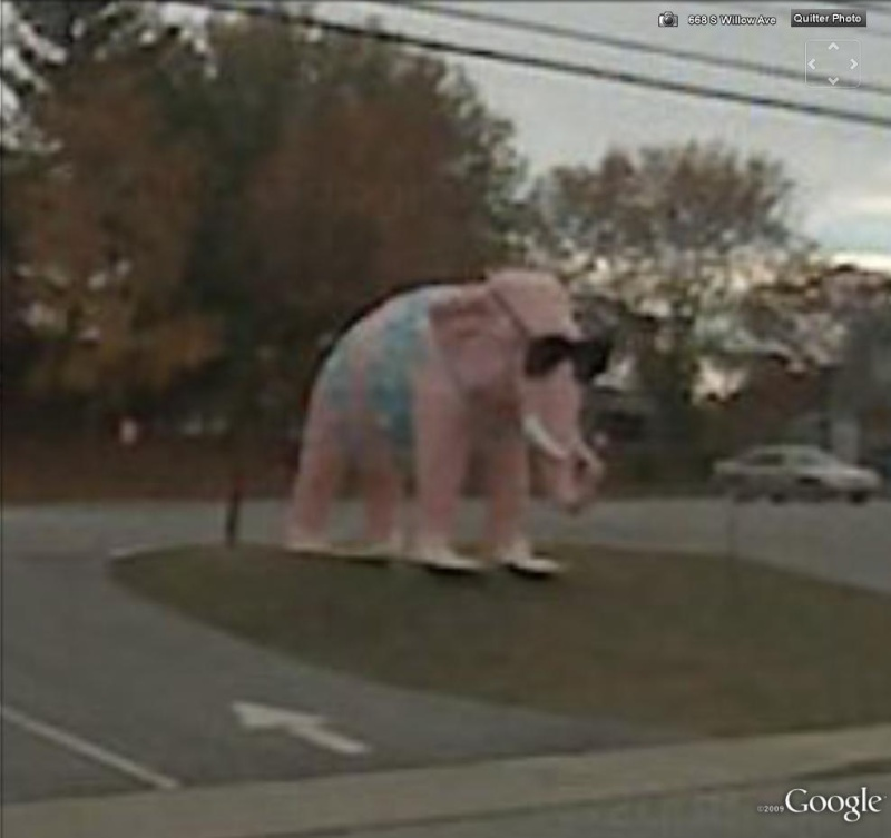 STREET VIEW : Eléphant rose Cookville Tennessee USA Elepha10