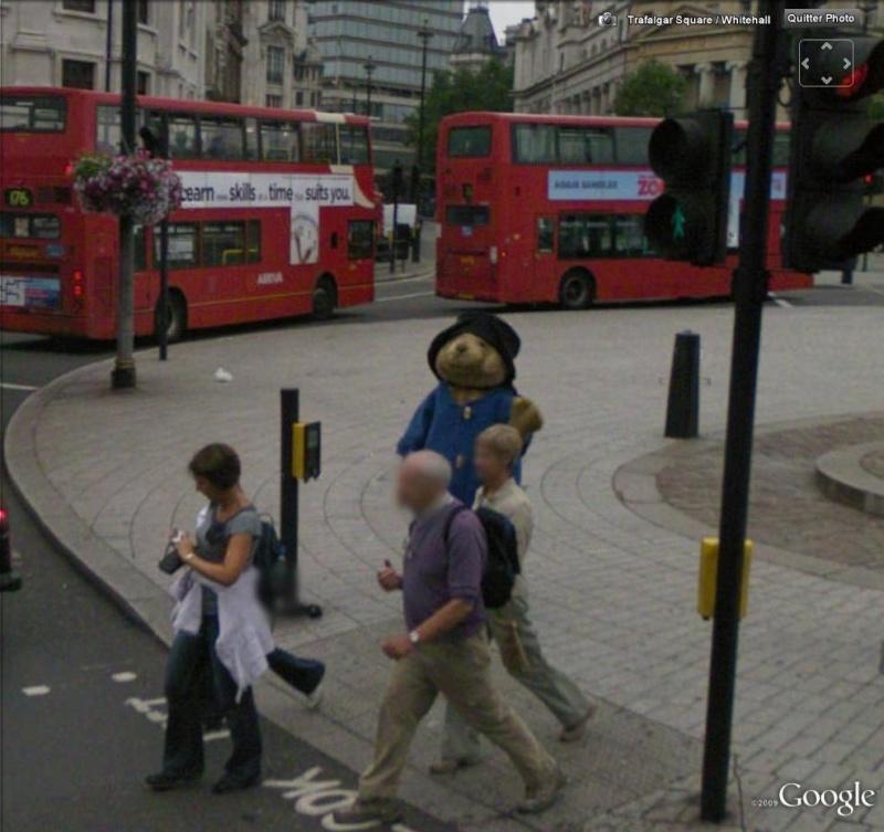 STREET VIEW :  objets, animaux et autres en version géante Ours110