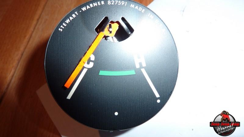 Maïte: ne se laisse pas compter (compteur vitesse CJ7) P1060438