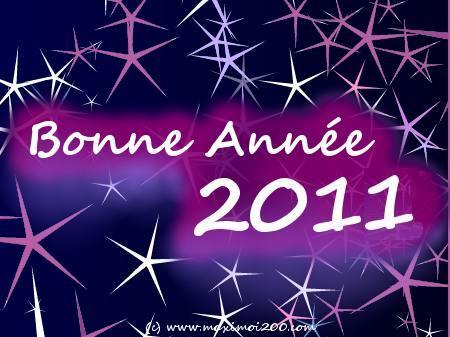 Meilleurs vœux et bonne année 2011 - Page 2 Carte-11