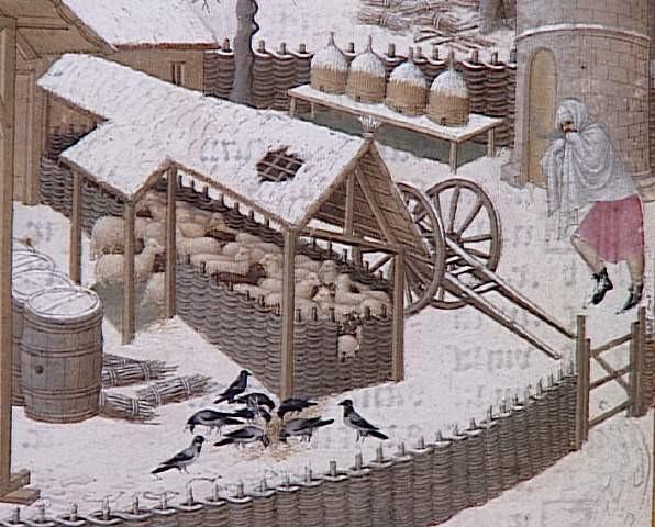 histoire des raquettes à neige 15ame_15