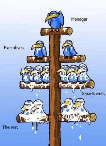 La hiérarchie Cid_1_10