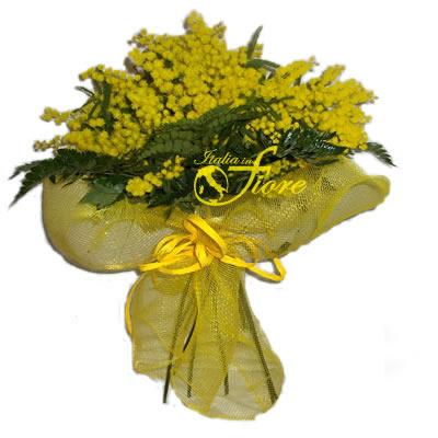 8 marzo festa della donna Mimosa11