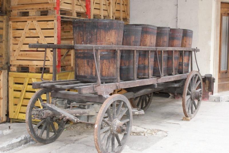 Expo sur la vigne à Wangen du 1er au 4 juillet 2010 W757ai11