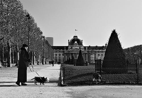 École militaire et Champs-de-Mars 10338310