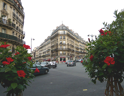 Ta vie de rêve Paris10