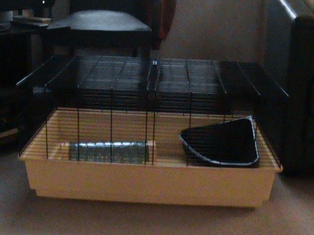 cage pour rats et cages hamster Dsc01825