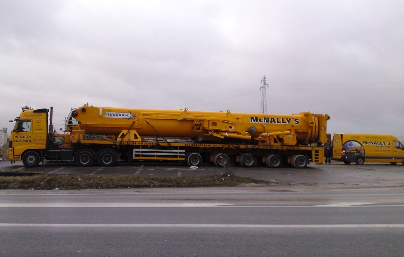 Les grues de Mc NALLY's (Irelande) 04210