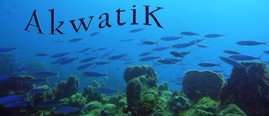 AkwatiK