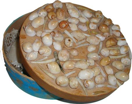 Les coquillages et la gastronomie Boite110