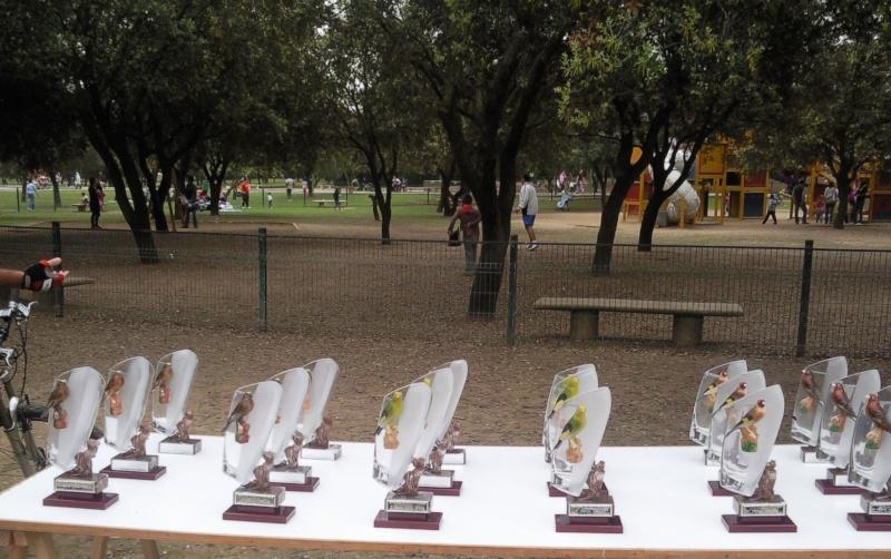 fotos entrega de trofeos puntuable dia 21-03-2010 4211