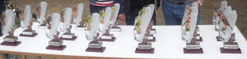 fotos entrega de trofeos puntuable dia 21-03-2010 4310