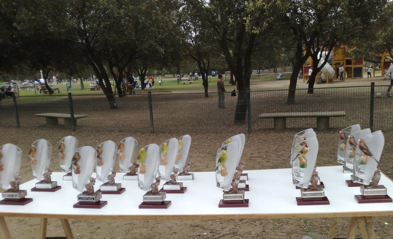 fotos entrega de trofeos puntuable dia 21-03-2010 4410