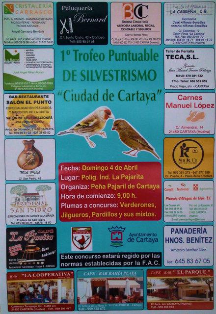concurso puntuable cartaya Cartel15