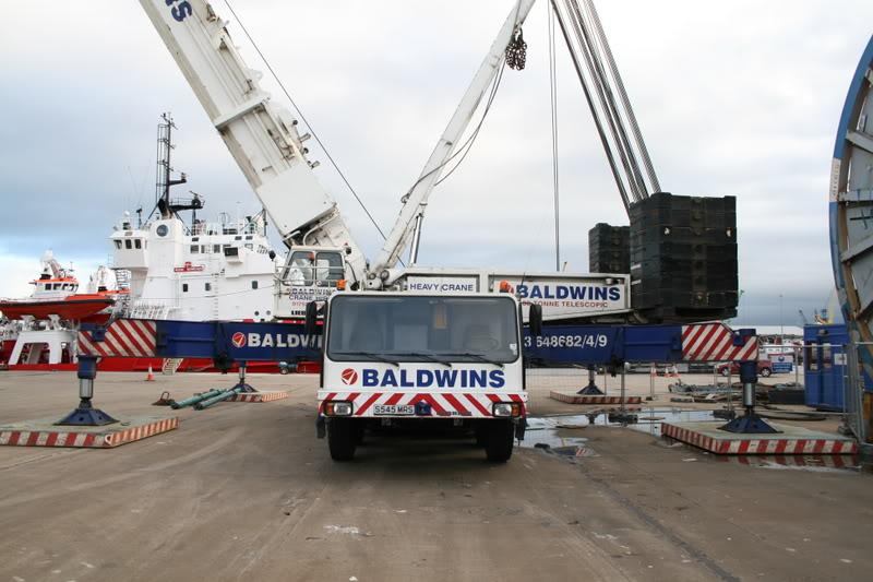 Les grues de BALDWINS (GB) Img_0211