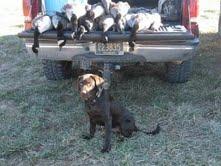 fridays hunt Jcomer10