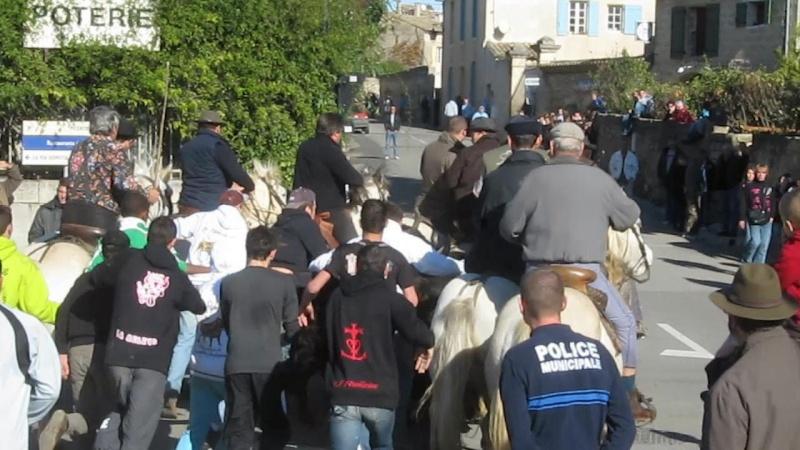 11.11.2010...Gallargues   le Mtx Mvi_3112