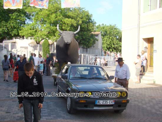 FERIA DE CAISSARGUE 2010 Dsc03420