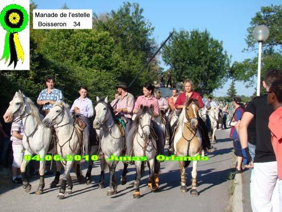 04.06.2010 bandide Junas manade l'estelle Dsc03711