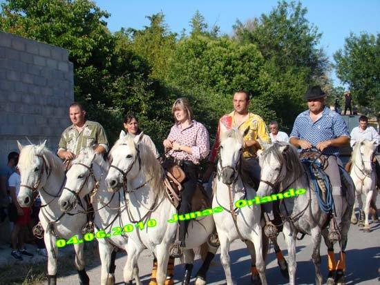 04.06.2010 bandide Junas manade l'estelle Dsc03712