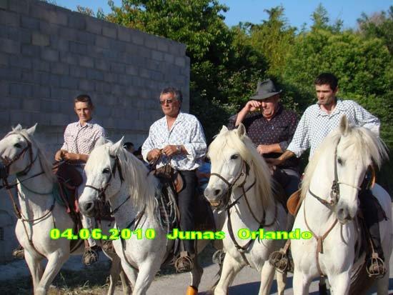 04.06.2010 bandide Junas manade l'estelle Dsc03713