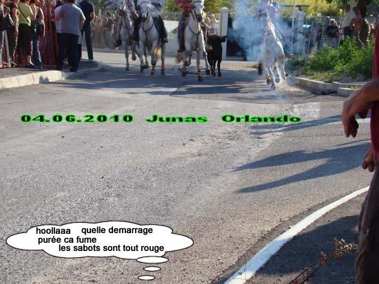 04.06.2010 bandide Junas manade l'estelle Dsc03714