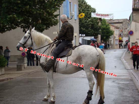 St Mamet du Gard Manade Leron 18h Dsc04210