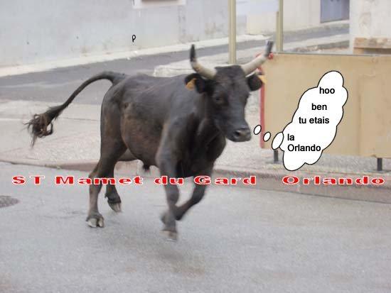 St Mamet du Gard Manade Leron 18h Dsc04212