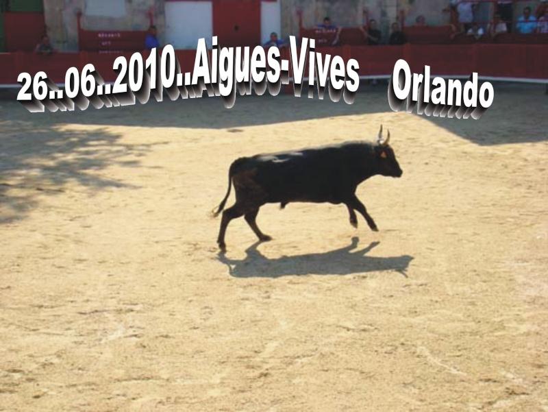 26.06.2010.....Aigues-Vives Dsc04313