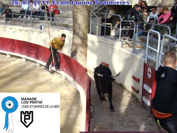 26..03..2011.Ecole Taurine Sommieres Dsc08611