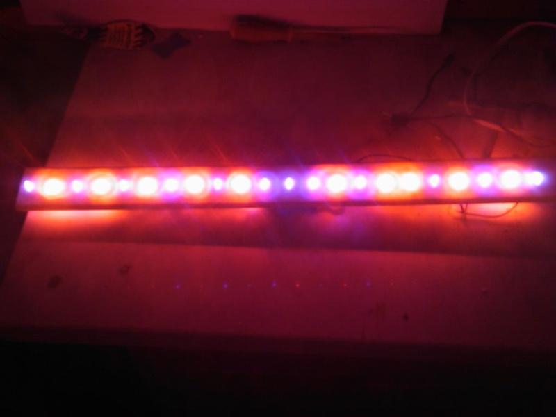 rampe d'éclairage a leds Dsc_0022