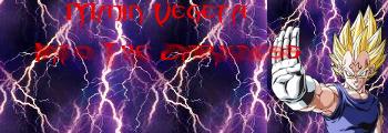 Mr. Itchgoruim's Wonder ArtPorium Vegeta11