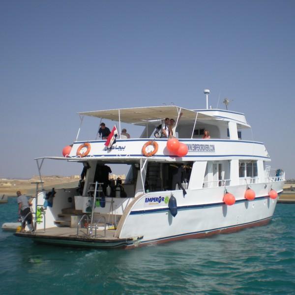 plonger en Egypte... Pegase10