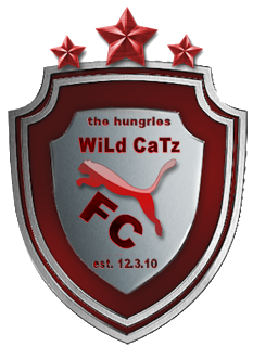 Team graphics/sets Wildca10