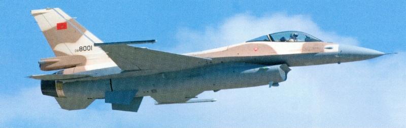 Photos RMAF F-16 C/D Block 52+ Numari19