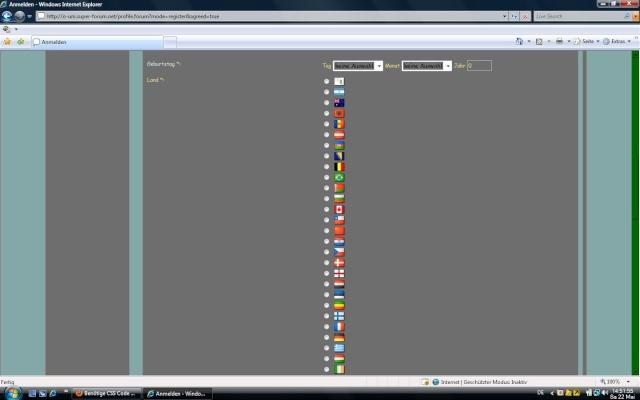 Benötige CSS Code für Login Bereich um Flaggen nebeneinander steht Fehler10