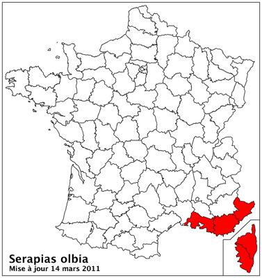 Serapias olbia ( Sérapias de Provence ) Carto_31
