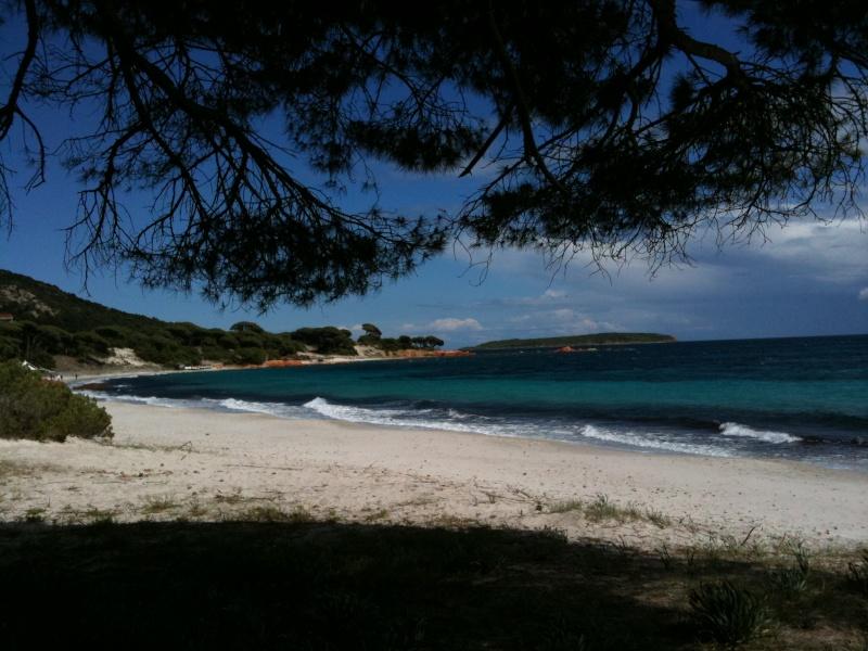La Corse destination à la mode MP ! Palomb11