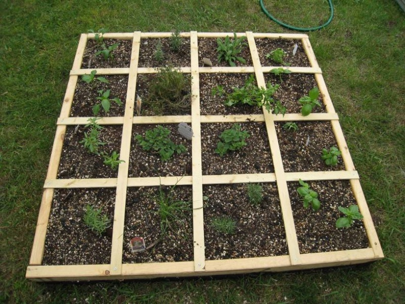 1st year - SF kitchen herb garden (West MI) 5/2010 Copy_h10
