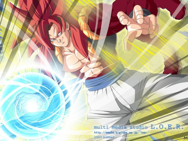 Dragon ball Gogeta10