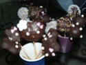 Cake pops - Page 2 P1030617