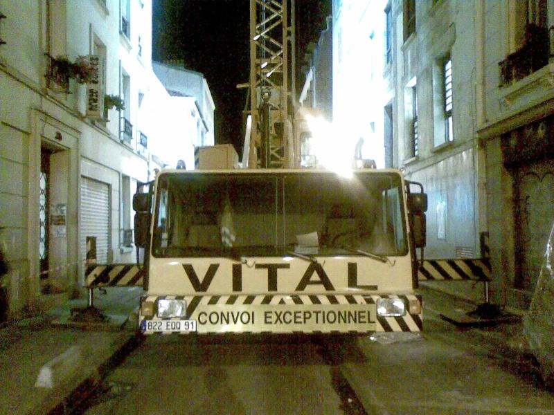 Les grues de VITAL (Groupe FOSELEV) (France) 04112014