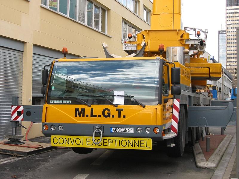 Les grues de M.L.G.T / LOCAGRUES (France) Photo_13