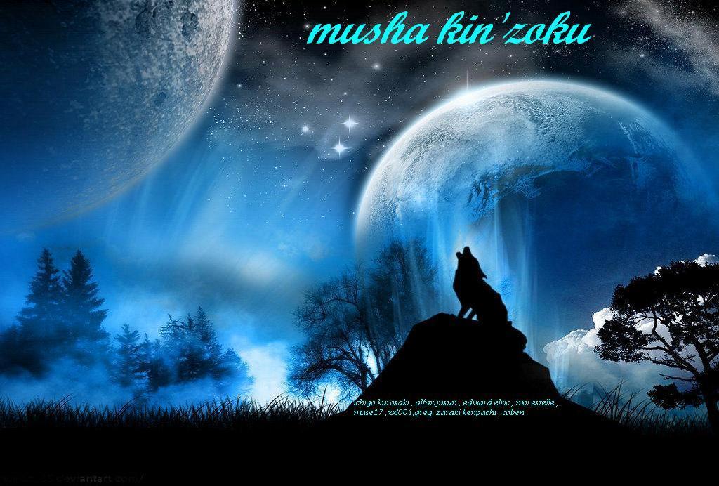 Musha Kin'zoku