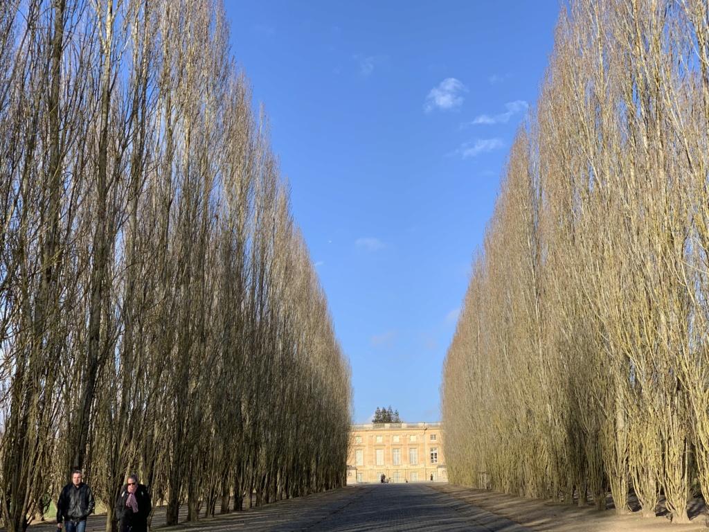 Balade à Versailles et Trianon au temps du Covid  0006c810