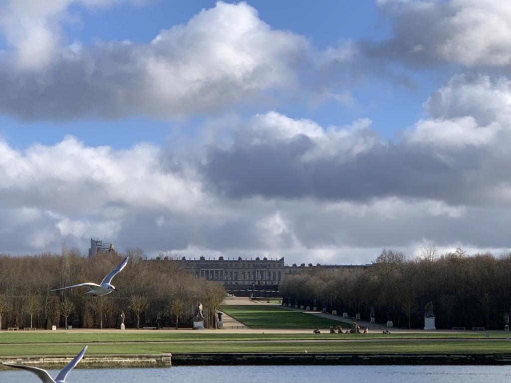 Balade à Versailles et Trianon au temps du Covid  15880010