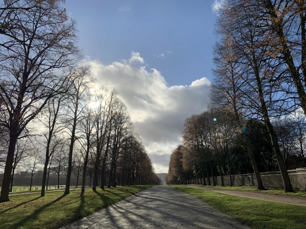 Balade à Versailles et Trianon au temps du Covid  1d97b110