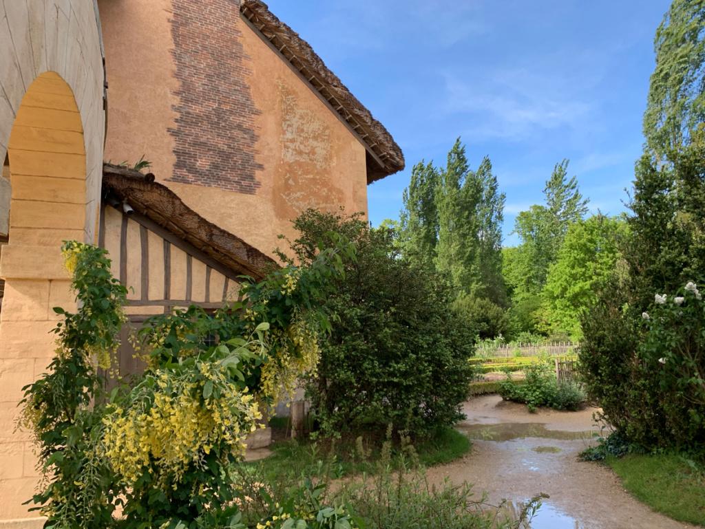 Hameau du Petit Trianon : Restauration de la maison de la Reine  - Page 19 3410