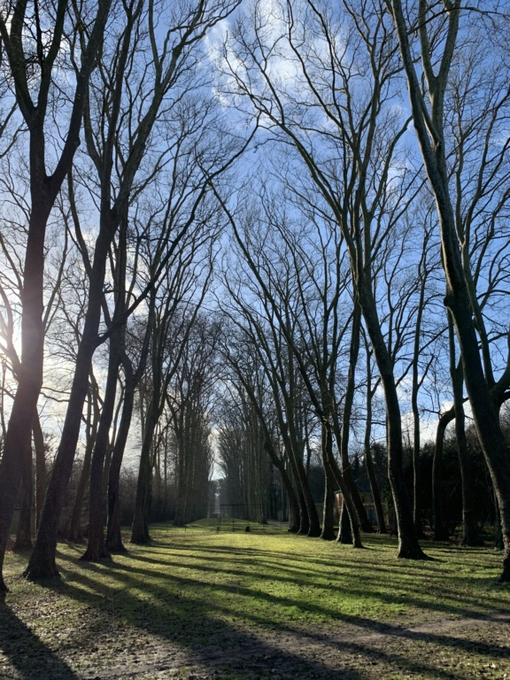 Balade à Versailles et Trianon au temps du Covid  7b0f0910